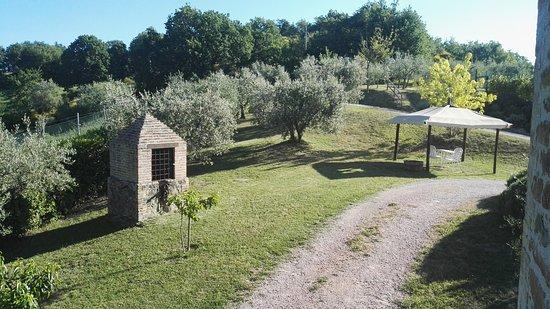 Agriturismo Ampugnano: Paesaggio meraviglioso