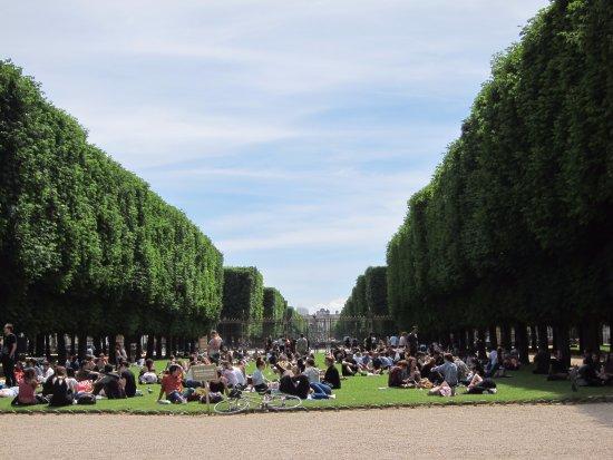 Le jardin du Luxembourg - パリ...