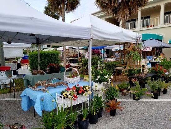 Vero Beach Farmer's Market