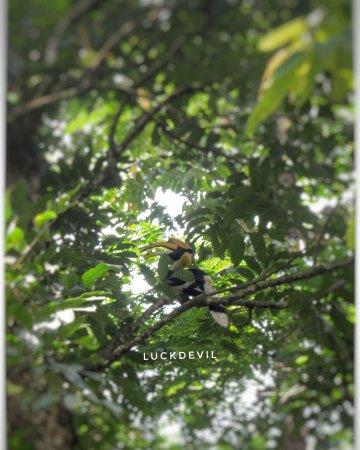 Nameri Eco Camp張圖片