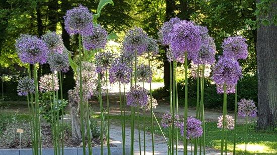 Meise, Belgio: Près de l'Orangerie
