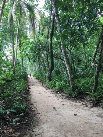 Cahuita, Costa Rica : photo2.jpg