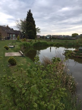 Tansley, UK: A view of the lake and one of the disabled pegs