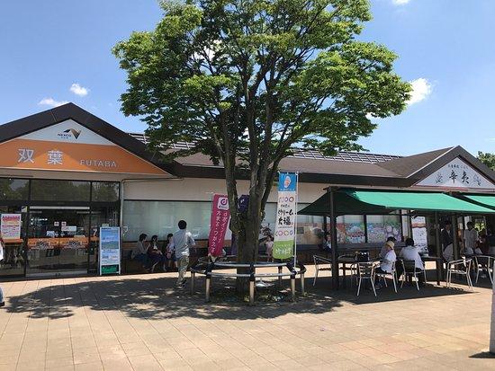 Futaba Service Area Down Line