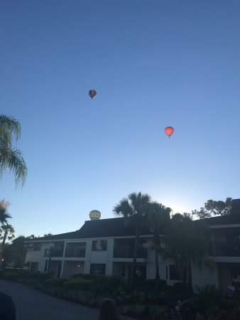 Wesley Chapel, FL: photo5.jpg