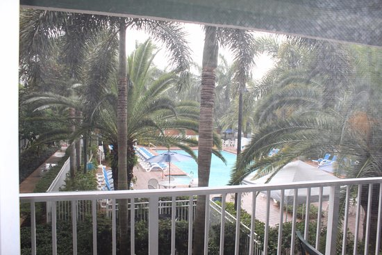 Mizner Place at Weston Town Center : view from the balcony