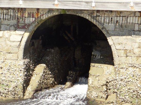 Moulin a Marée: intérieur du moulin