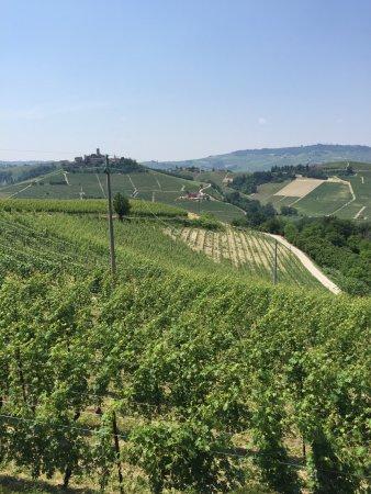 Serralunga d'Alba, Italien: photo3.jpg