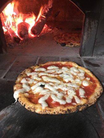 Bridgeport, CT: The best pizza!! Original Neapolitan pizza. So delicious