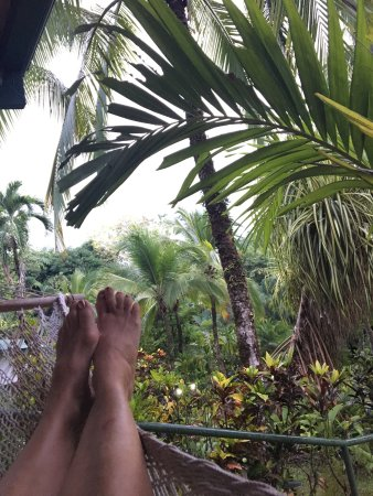 Falls Resort at Manuel Antonio : Happy feet in a hammock.