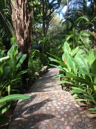 Nectar at Florblanca Resort: Path down to the restaurant