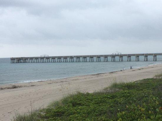 Juno Beach, FL: juno beabh pier
