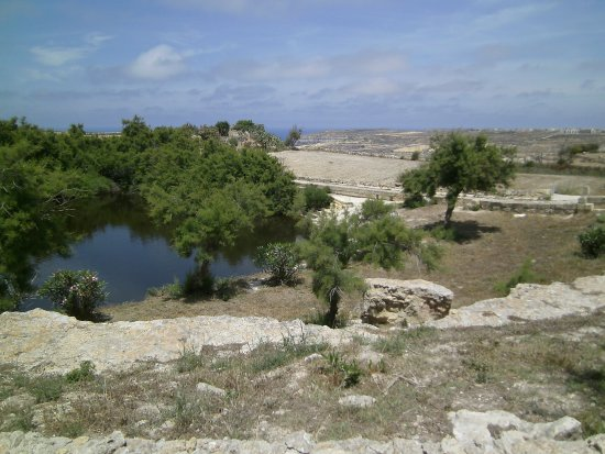 Victoria, Malta: Der einzige Teich der das Ganze Jahr über Wasser führt in Gozo