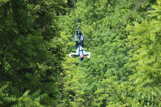Foxfire Mountain Adventures: This was a great experience and fun!!!