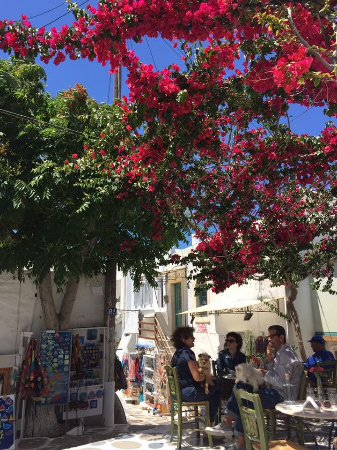 Cyclades, Greece: Paros