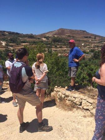 Xaghra, Malta: Olive groves