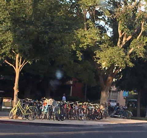 Davis, CA: photo2.jpg
