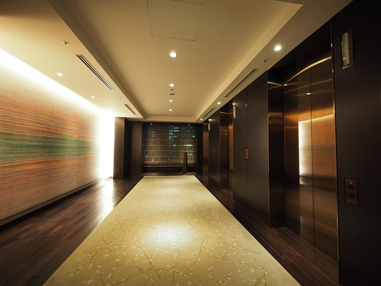 Elevator hall at room floor
