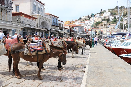 Agios Konstantinos (Church of St. Constantine): horses used as transportation