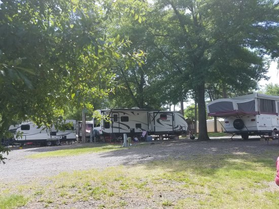 Charlotte / Fort Mill KOA: View from site 106 toward entrance