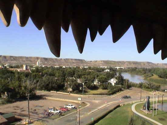 World's Largest Dinosaur: Another view from his mouth