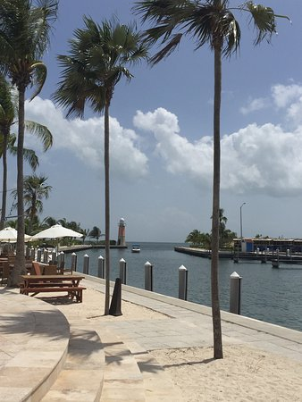 George Town Yacht Club: photo4.jpg