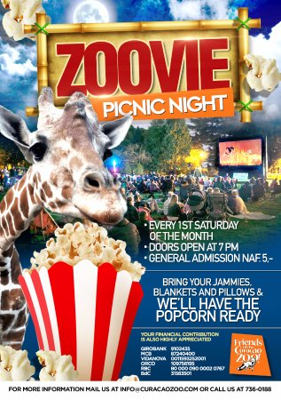 Curacao Zoo: Every First Saturday of the Month, Friends of the Curaçao Zoo host our Zoovie Picnic Night.