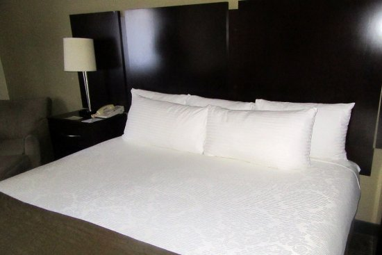 King Size Bed, BW Plus Plaza By the Green, Kent, WA