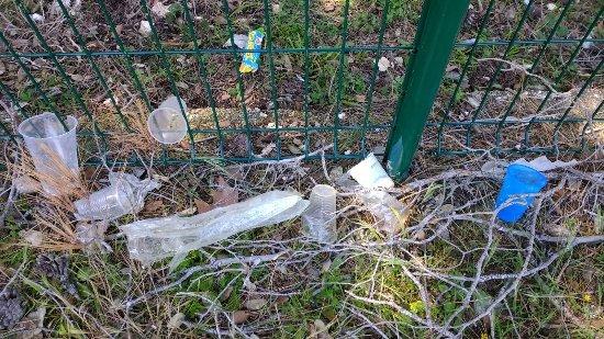 Brijuni National Park, Κροατία: Plastic and rubbish by the road