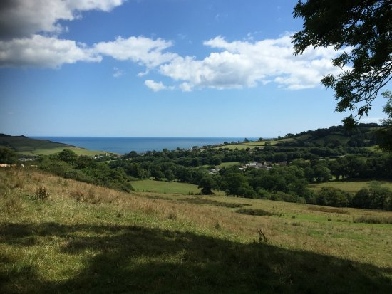 Charmouth, UK: View from one of the top fields towards the sea