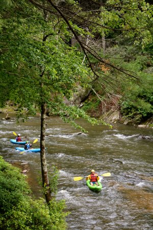 Ellijay, GA: Cartecay River