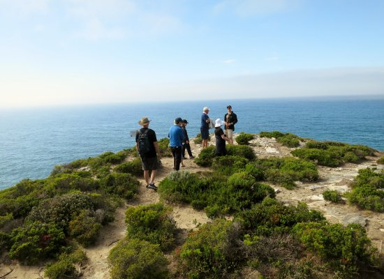 Southern Ocean Lodge: Guided Cliff Hike