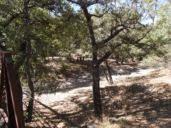 Cochise Stronghold: Camping area