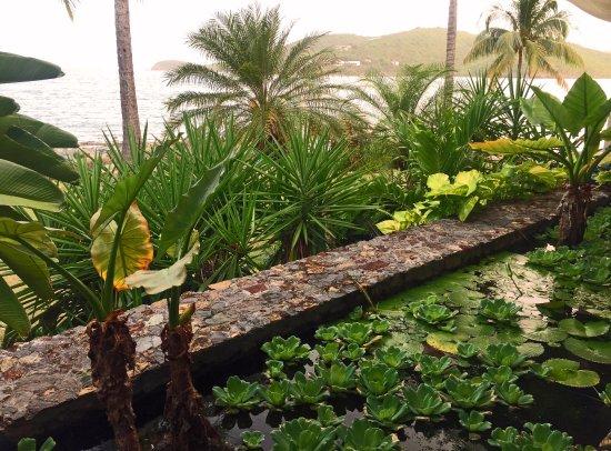 Frenchtown, Saint Thomas: Water Garden Inside Oceana