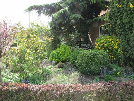Marken, هولندا: nice landscaping