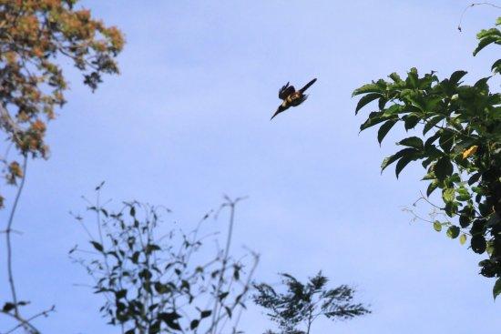 Ticuantepe, นิการากัว: photo3.jpg