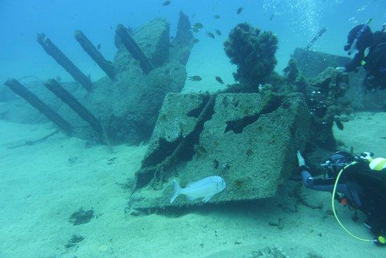 Rubicon Diving: d'autres épave