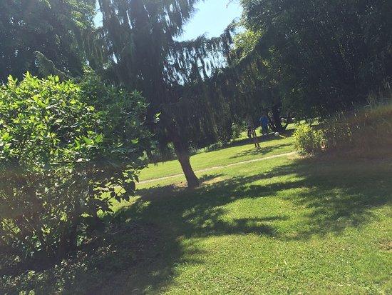 Jardin anglais photo de jardin anglais de vesoul vesoul for Jardin anglais vesoul