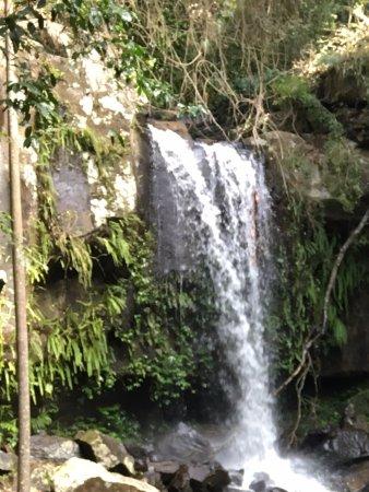 Gold Coast, Australia: Beautiful waterfalls
