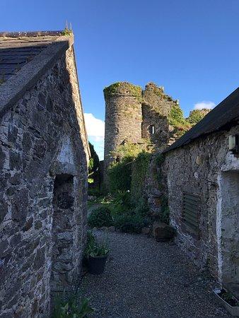 Drinagh, Irlanda: photo4.jpg