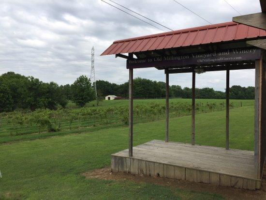 Millington, TN: photo1.jpg
