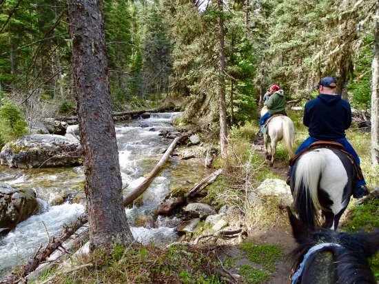 Gallatin Gateway, MT: Riding along the Gallatin river