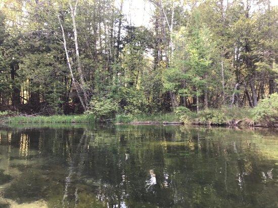 Glen Arbor, MI: photo2.jpg