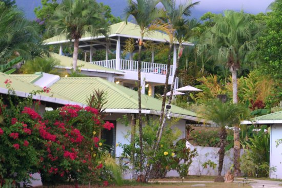 Ojochal, Costa Rica: Sunset time.  Atardecer en el jardín.