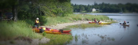 Lunenburg Paddling Adventours & Rentals