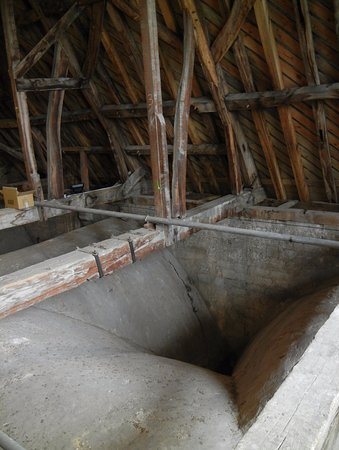 Salisbury Cathedral: Through the rafters, above the fan ceiling
