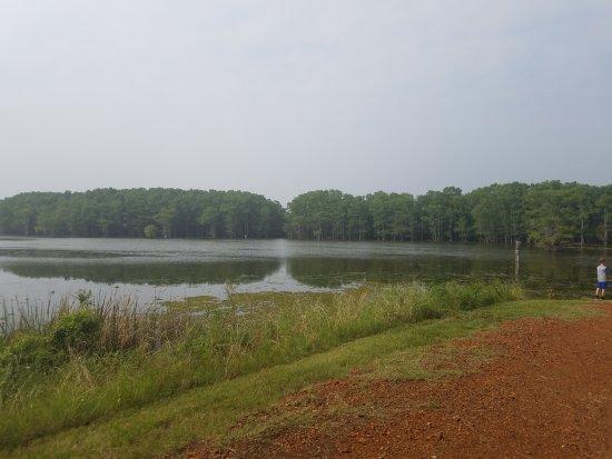 Caddo Lake National Wildlife Refuge