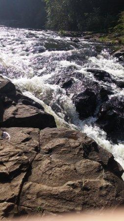 Maleny, Australia: part of the falls