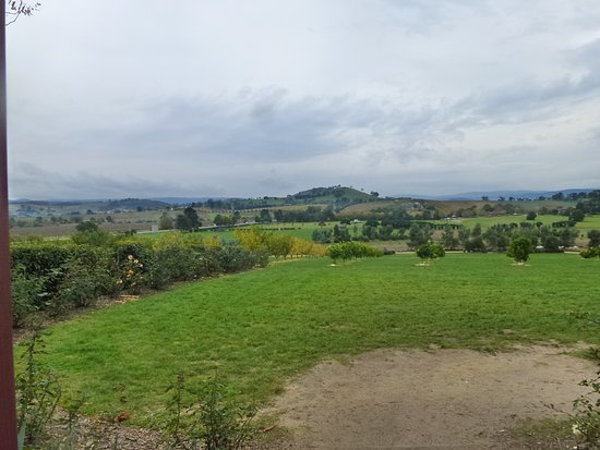 Yarra Glen, Australië: The view from the shop.