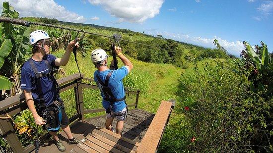 Skyline Eco Adventures - Akaka Falls: Preparing to zip